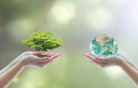 Geht Umweltschutz auch kostengünstig?